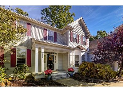 Chagrin Falls Single Family Home For Sale: 8100 Wisteria Dr