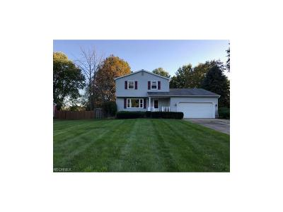 Youngstown Single Family Home For Sale: 4605 Sheffield Dr