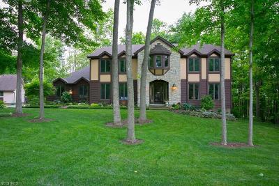 Medina Single Family Home For Sale: 3538 Reserve Dr