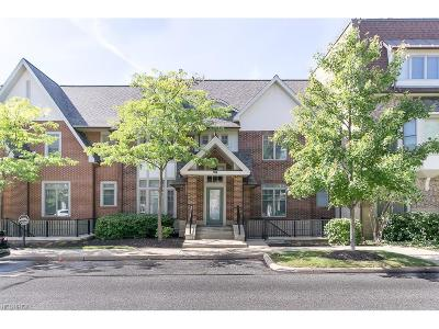 Cuyahoga County Condo/Townhouse For Sale: 116 Vine