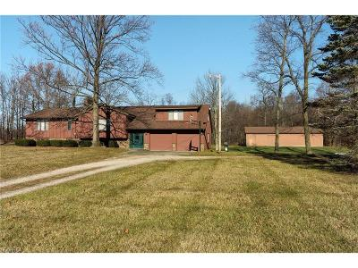 Litchfield Single Family Home For Sale: 9555 West Smith Rd
