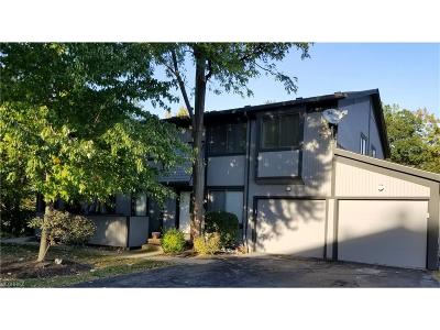 Willoughby Condo/Townhouse For Sale: 34939 North Turtle Trl #3-A
