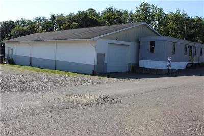Zanesville Commercial For Sale: 2890 East Pike
