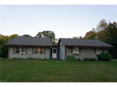 Newbury Single Family Home For Sale: 14375 Ravenna Rd