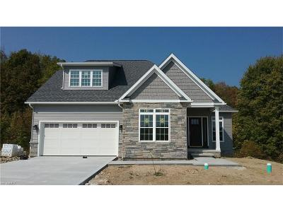 Hiram Single Family Home For Sale: 7061 Village Way Dr