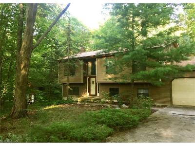 Chagrin Falls Single Family Home For Sale: 17835 Bridge Creek Crk