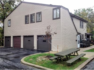 Bedford Condo/Townhouse For Sale: 544 Turney Rd #D