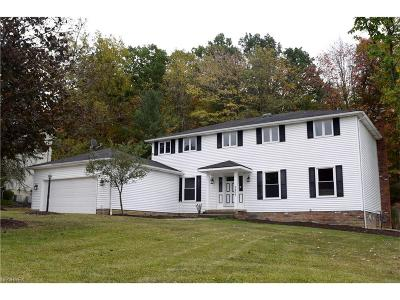 North Royalton Single Family Home For Sale: 9463 Chesapeake Dr