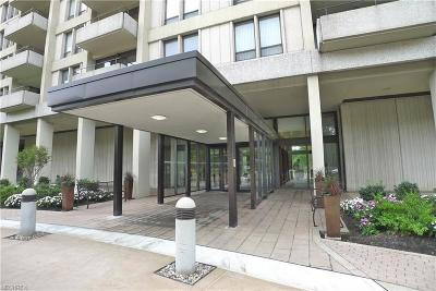 Bratenahl Condo/Townhouse For Sale: 1 Bratenahl Pl #308