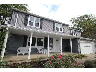 Mentor Single Family Home For Sale: 8763 Applewood Ct