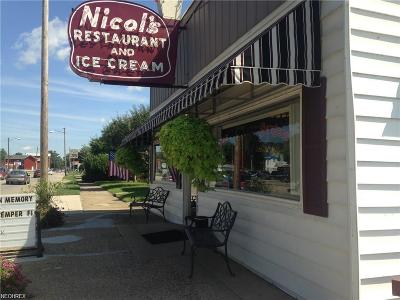 Muskingum County Commercial For Sale: 730 Putnam Ave