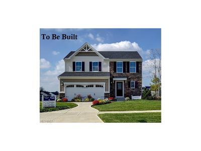 North Ridgeville Single Family Home For Sale: 20 Barkhurst Mill Dr