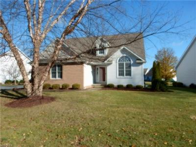 Canfield Condo/Townhouse For Sale: 81 Lake Pointe Cir