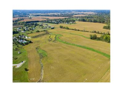Licking County Commercial For Sale: Blacks Road