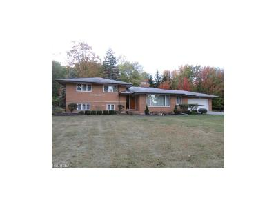 Brecksville, Broadview Heights Single Family Home For Sale: 9080 Avery Rd