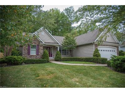 Concord Single Family Home For Sale: 12254 Summerwood Dr