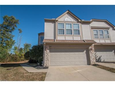 Brecksville, Broadview Heights Single Family Home For Sale: 1467 North Yorkshire Dr
