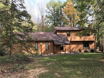 Strongsville Single Family Home For Sale: 20085 Idlewood Trl
