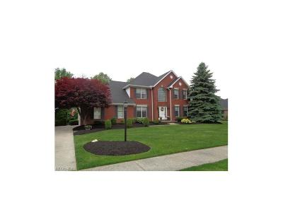 Strongsville Single Family Home For Sale: 16360 Academy Dr
