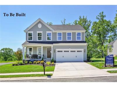 Brimfield Single Family Home For Sale: 90 Gooseberry Knoll