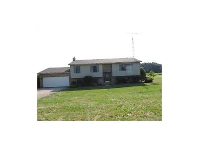 Beloit OH Single Family Home For Sale: $119,900