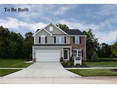 Brimfield Single Family Home For Sale: 89 Gooseberry Knoll