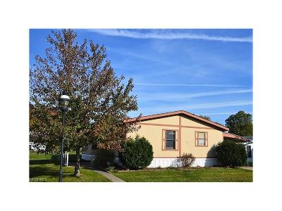 Olmsted Township Single Family Home For Sale: 4 Lees Ln