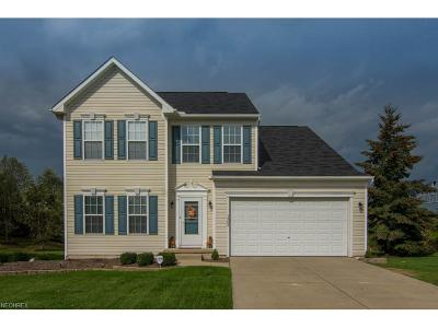Painesville Single Family Home For Sale: 1565 Poplar Ln