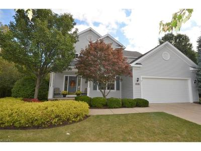 Brecksville, Broadview Heights Single Family Home For Sale: 1211 Cloverberry Ct