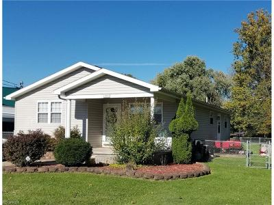 Vienna Single Family Home For Sale: 1501 6th Street