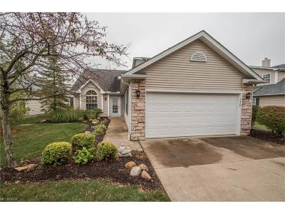 Brecksville, Broadview Heights Condo/Townhouse For Sale: 7528 Sanctuary Cir #26
