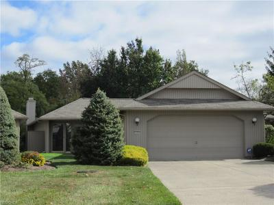 Strongsville Single Family Home For Sale: 12303 Altis Ct