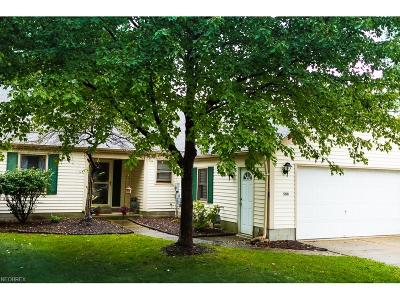 Painesville OH Single Family Home For Sale: $125,000