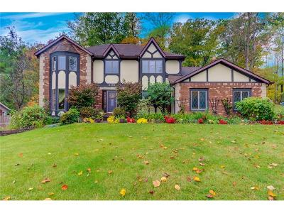 Brecksville, Broadview Heights Single Family Home For Sale: 6552 Queens Way