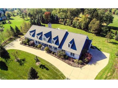 Summit County Single Family Home For Sale: 7596 North Vinemont Ct