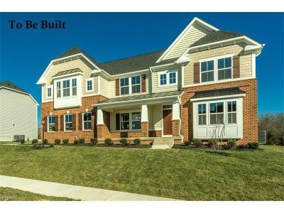 Avon, Avon Lake Single Family Home For Sale: 44 Fairview Dr