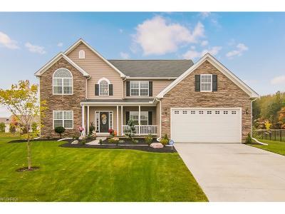 North Ridgeville Single Family Home For Sale: 37903 Elva Ln
