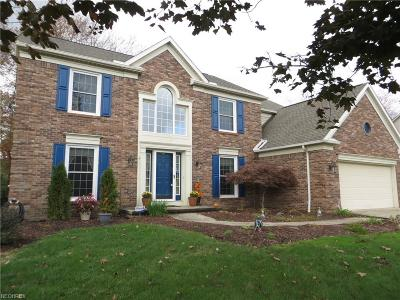 Strongsville Single Family Home For Sale: 18236 Martins Ln