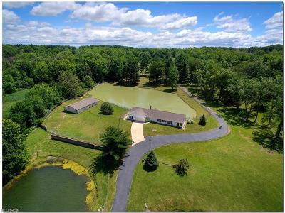 Summit County Single Family Home For Sale: 9541 North Bedford Rd