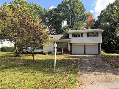 Youngstown Single Family Home For Sale: 3429 Black Oak Ln