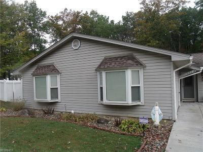Youngstown OH Single Family Home For Sale: $168,900