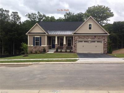 Medina Single Family Home For Sale: 6745 Maplebrooke Trace