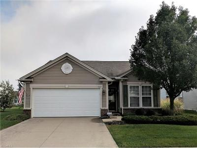North Ridgeville Single Family Home For Sale: 9321 Grist Mill Dr