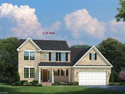 Medina Single Family Home For Sale: 6751 Maplebrooke Trace