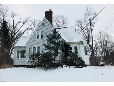 Mentor Single Family Home For Sale: 8338 Lake Shore Blvd