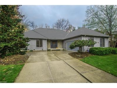 Echo Lake Single Family Home For Sale: 19685 Summer Pl