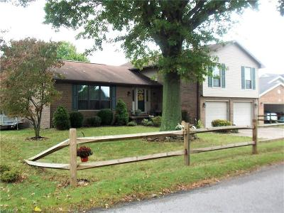 Vienna Single Family Home For Sale: 3202 River Rd