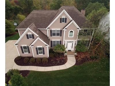 Brecksville, Broadview Heights Single Family Home For Sale: 8039 Majestic Oaks Trl