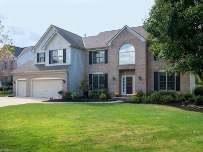 Waterford Crossing Single Family Home For Sale: 18588 Glen Cairn Way