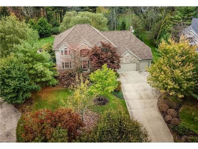 Solon Single Family Home For Sale: 5614 Westminster Dr